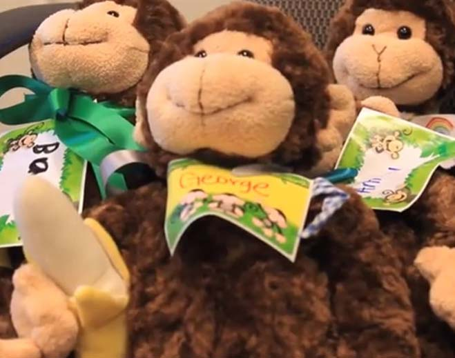 stuffed-animals-feat